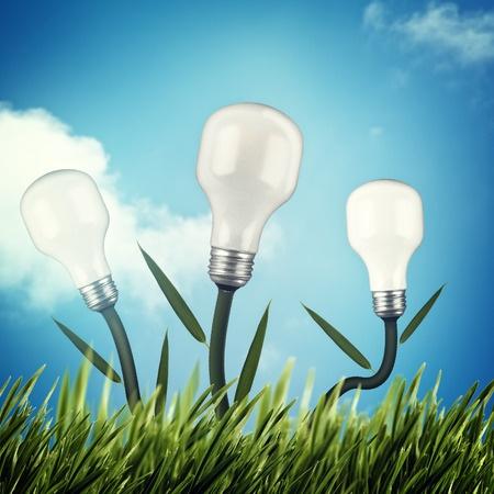 אביזרי חשמל מקצועיים