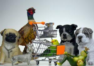 חנות חיות