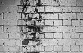 טיפול בעובש בקירות