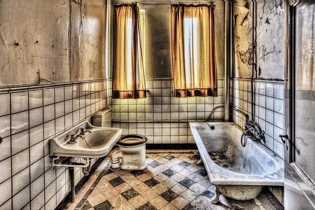מהן הסכנות בעובש באמבטיה ואיך ניתן לטפל בו?