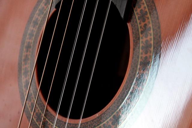 מיתרים של גיטרה